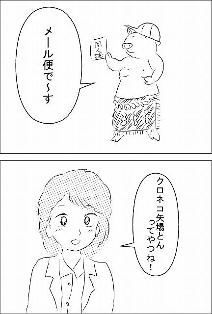s-メール便.jpg
